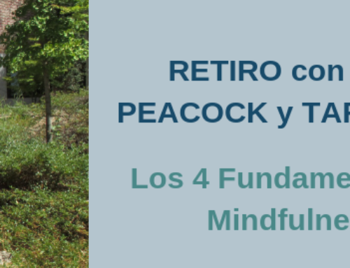 Retiro: Los 4 fundamentos de Mindfulness
